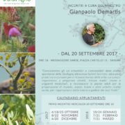 Calarighe - erbe spontanee di Sardegna - locandina